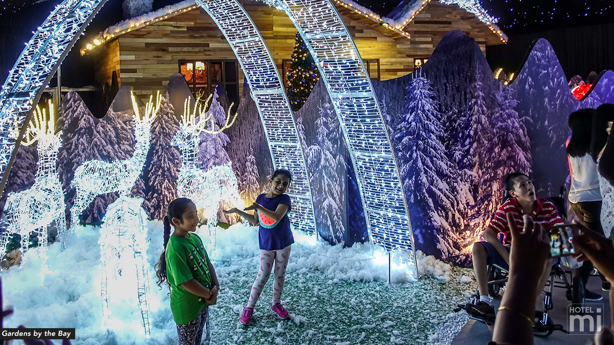 Christmas Wonderland at Gardens by the Bay 2017, Singapore